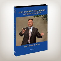 The Power of Soul (DVD)
